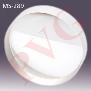 MS-289